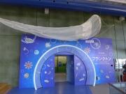 5.水族館企画展.JPG